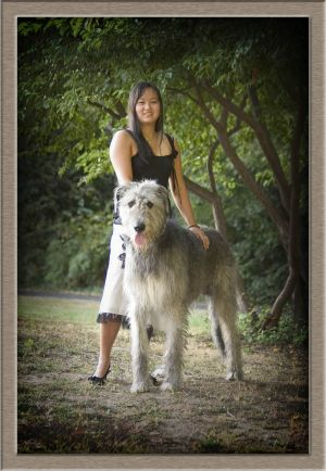 West Linn High School Senior Girl with Pet Wolfhound